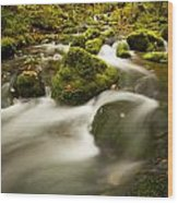 Mossy Rocks Along Lavis Brook In The Wood Print