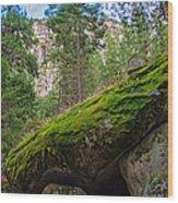 Mossy Rocks Along Vernal Falls Trail Wood Print