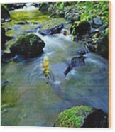 Mossy Rocks And Moving Water  Wood Print