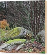 Mossy Rocks Garden Wood Print