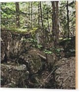 Mossy Rocks In The Forest Wood Print