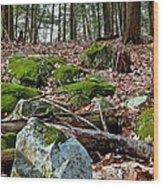 Mossy Rocks Wood Print
