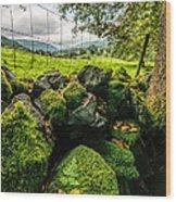 Mossy Wall Wood Print