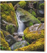 Mossy Waterfall Wood Print