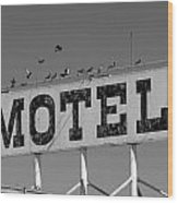 Motel For The Birds Wood Print by Peter Tellone