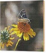 Moth And Flower Wood Print