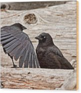 Mother And Baby Crow At The Beach Wood Print