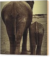 Mother And Baby Elephant In Black And White Wood Print