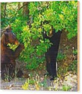 Mother Bear And Cub Wood Print