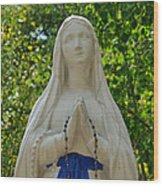 Mother Mary At Mother Cabrini Wood Print