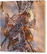 Mother Nature's Christmas Decorations - Golden Oak Leaves Jewels Wood Print