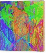 Mother Of Exiles 20130618m120 Long Wood Print by Wingsdomain Art and Photography