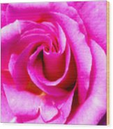 Mother's Day Rose Blank Wood Print