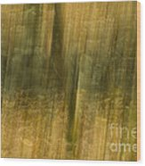 Motion Series - 123 Wood Print