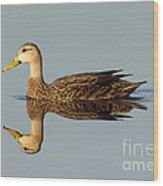 Mottled Duck Wood Print