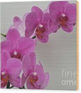Mottled Orchid 1 Wood Print