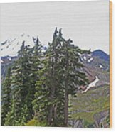 Mount Baker Area Wilderness Wood Print