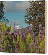 Mount Cook Wood Print