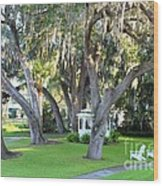 Mount Dora Wood Print by Carey Chen