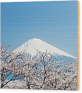 Mount Fuji & Cherry Blossom Wood Print