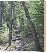Mount Hancock Hiking Trail New Hampshire Wood Print