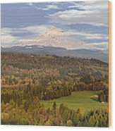 Mount Hood Over Sandy River Valley Wood Print