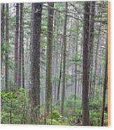 Mount Jim - Kinsman Notch New Hampshire Wood Print