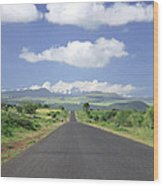 Mount Kenya Wood Print