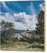 Mount Lovstakken Wood Print