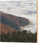 Mount Mitchell Morning Wood Print