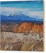 Mount Princeton Wood Print