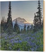 Mount Rainer Flower Fields Wood Print