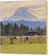 Mount Rainier And Grazing Horses Wood Print