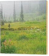 Mount Revelstoke National Park British Columbia Canada Wood Print