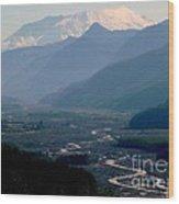Mount Saint Helens Valley  Wood Print
