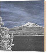 Mount Shasta Wood Print