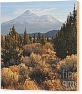 Mount Shasta In The Fall  Wood Print by Gary Whitton