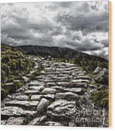 Mount Snowdon Path Wood Print by Jane Rix