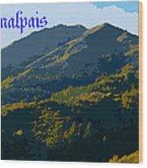 Mount Tamalpais 2013 Wood Print
