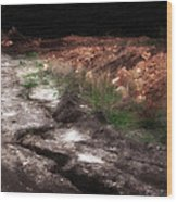 Mount Trashmore - Series Iv - Painted Photograph Wood Print
