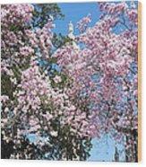 Baltimore's Mount Vernon In Spring Wood Print