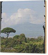 Mount Vesuvius Wood Print