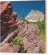 Mount Wilbur Wood Print