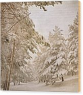 Mountain Adventure In The Snow Wood Print