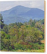 Mountain And Valley Near Brevard Wood Print