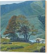 Mountain Behind Fields Wood Print