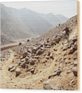 Mountain Biker Rides Through Rocky Wood Print