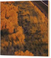 Mountain Biking Wood Print