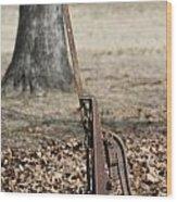 Mountain Bluebird On Well Pump Wood Print