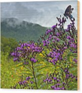 Mountain Butterfly  Wood Print